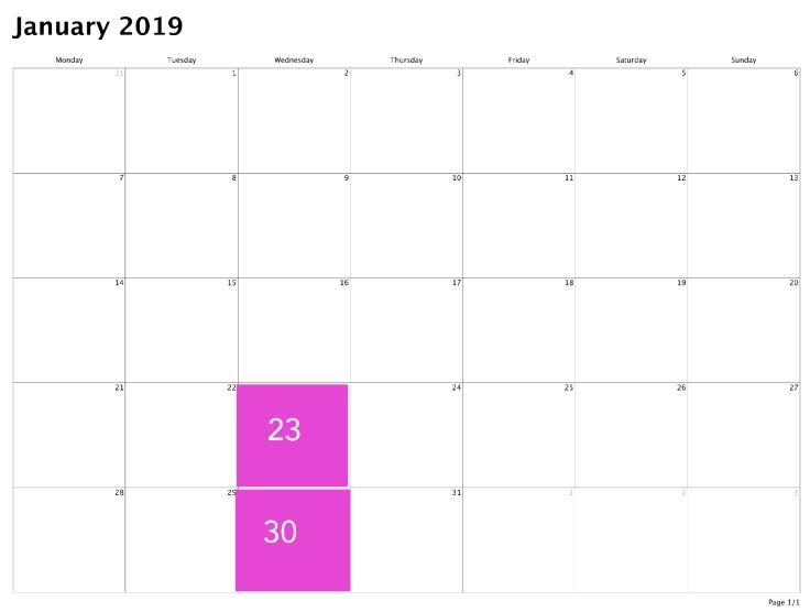 calendar-2019-01-31